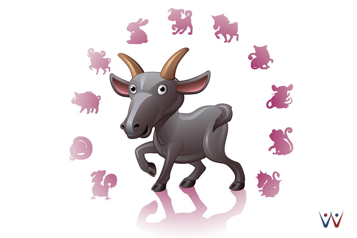 корейском картинка гороскоп овца юмором