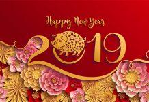 shio paling beruntung 2019 (1) - Ini Ramalan Keuangan Berdasarkan Shio pada Tahun Babi Tanah 2019