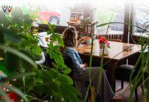 5 Aktivitas Eco Green yang Bisa Anda Terapkan di Lingkungan Kantor