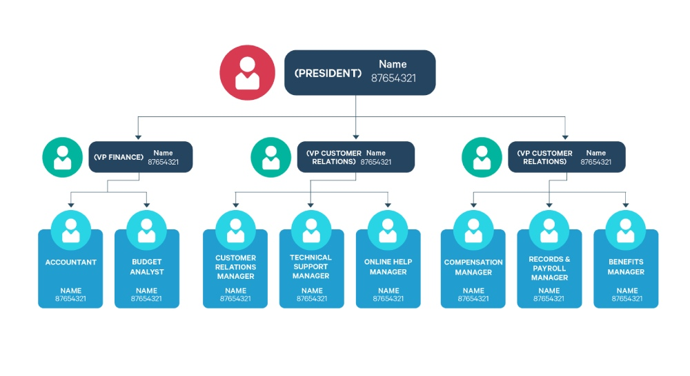 struktur organisasi tipe functional