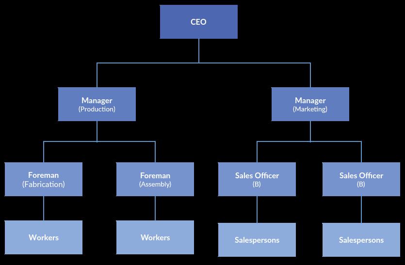 struktur organisasi tipe hirarki